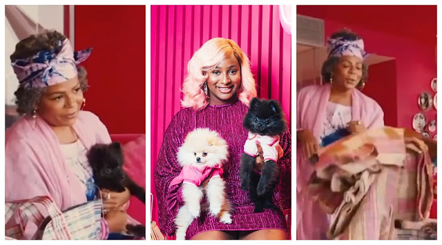 Lovely moment as DJ Cuppy mom surprises Cuppy and  Her Dogs with Matching Aso Oke (Video)