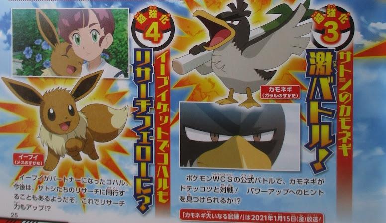 Farfetch'd de Galar do Ash no Anime