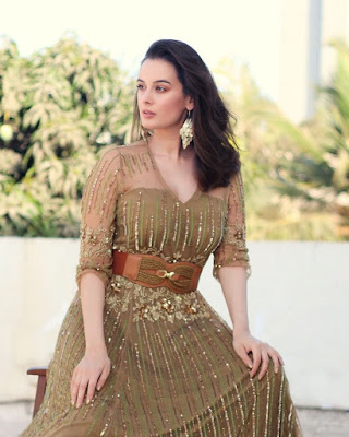 Evelyn Sharma (Indian Actress) Biography, Wiki, Age, Height, Family, Career, Awards, and Many More