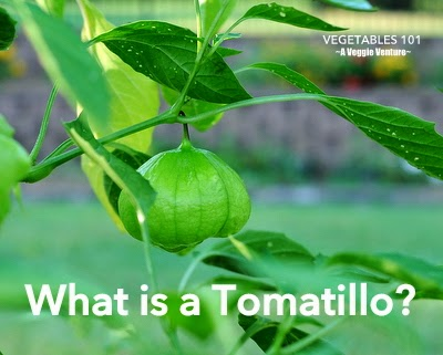 Vegetables 101: What Is a Tomatillo?