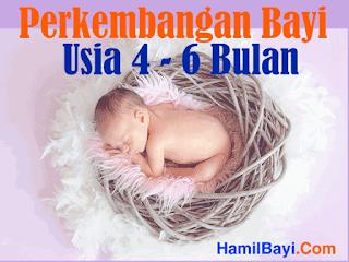 Perkembangan Bayi Usia 4 5 6 Bulan
