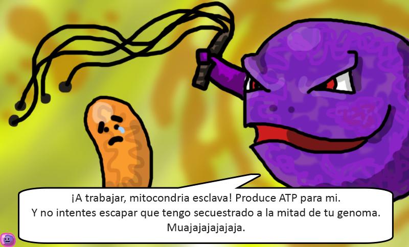 Estudiante de microbiologia de la ucimed se masturba costa rica - 3 2