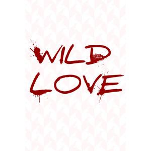 Cerbung Wild Love Episode 4