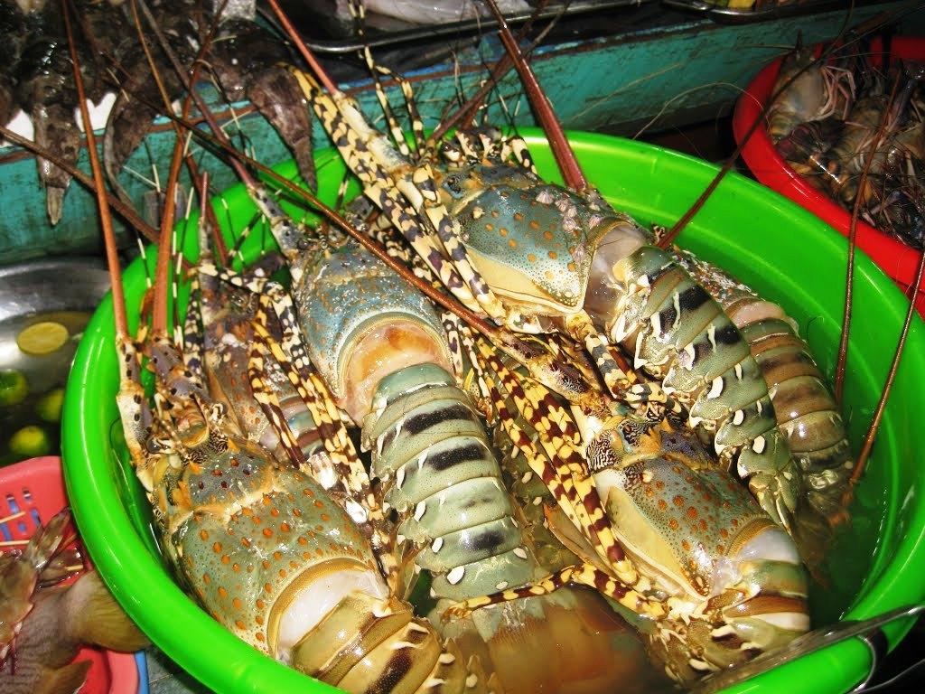 Kinh nghiệm ăn hải sản ở Nha Trang