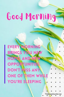 101 best Good Morning Quotes Status for girlfriend | Good Morning Images - Theshayariquotes.xyz