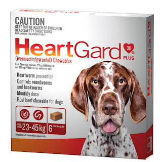 A photo of a pack of HeartGard Plus for dogs 23-45kg