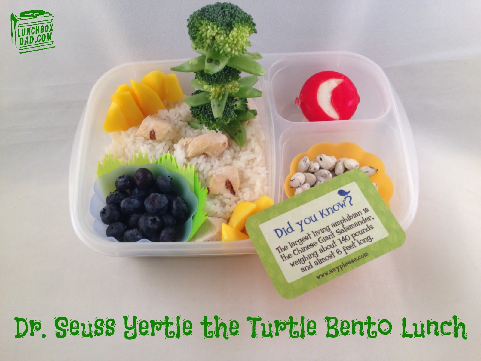 Dr. Seuss Yertle the Turtle bento lunch