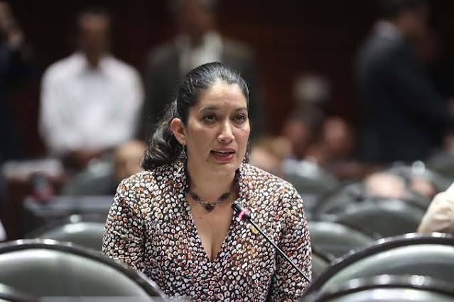 Exige Rocío Villarauz erradicar violencia y acoso sexual contra mujeres en los tres órdenes de gobierno