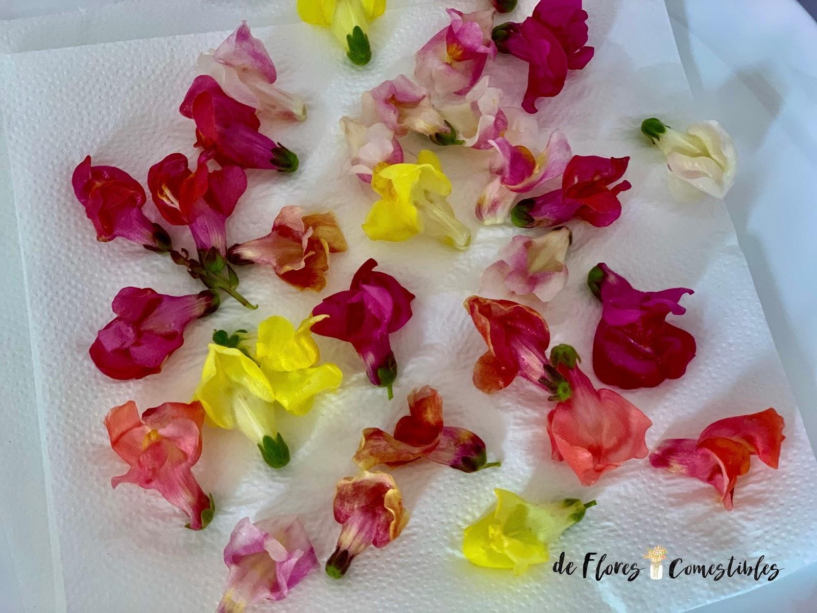 Decorar  los platos con flores