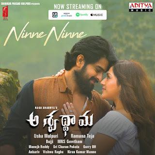 nagaa-shaurya-ashwathama-movie-poster