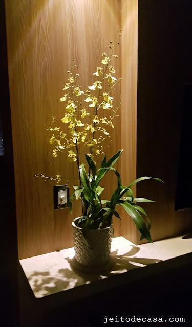 orquidea-oncidium-aloha-decoração