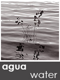 https://albumdeinstantes.blogspot.com/p/aguawater.html