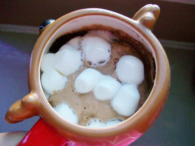 Hot Cocoa Mug Cake