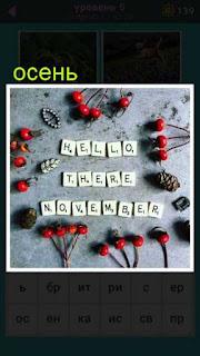 на земле выложено приветствие месяцу ноябрь , который относится к осени