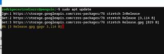 Chrome OS - Linux