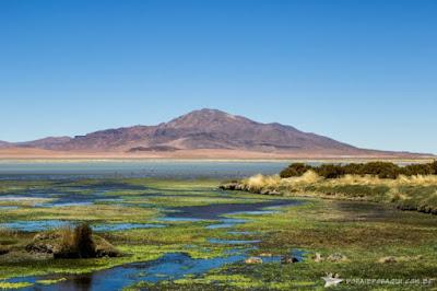 Destinos que inspiram - Atacama