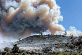 australia_bushfire_660_040120123521