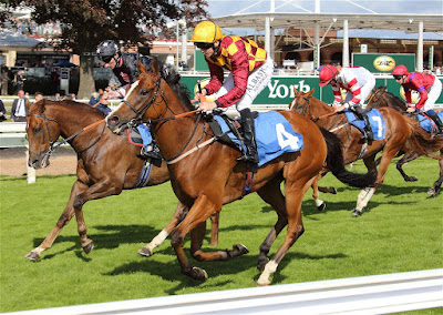 Antony Brittain horse trainer