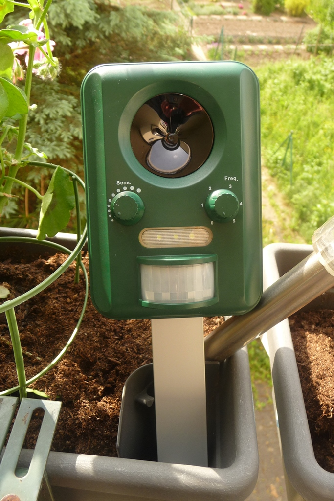 mein testblog nicki testet die signstek ultraschall abwehr mit solarbetrieb und blitz gegen. Black Bedroom Furniture Sets. Home Design Ideas
