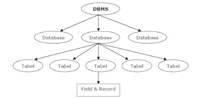 Crewnesia - Mari Mengenal Database MySQL
