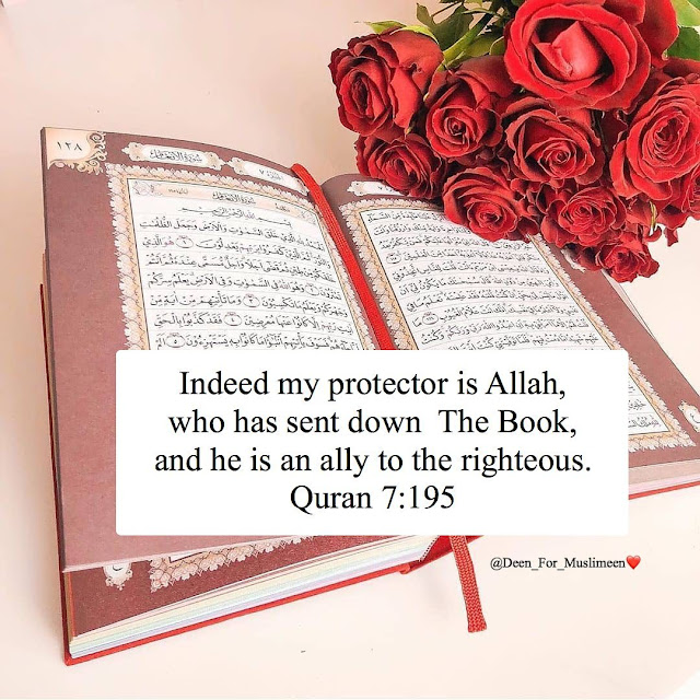 quran picture gallery