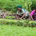 GNDA boss wants all Nigerians to embrace farming