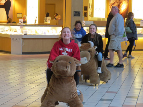 kids riding stuffed animals