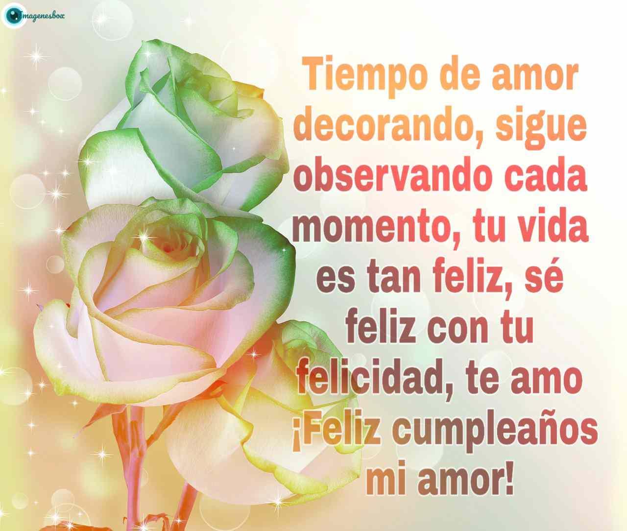 Feliz Cumpleaños Amor Frases De Amor