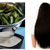 Best hair growth treatment at home