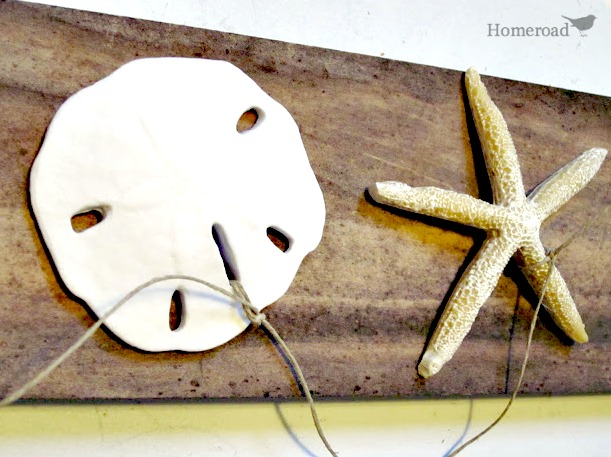 sand dollar and starfish on a length of waxed thread