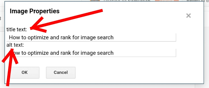 How to Optimize and rank in Google Image Search: Add image title text and Alt text