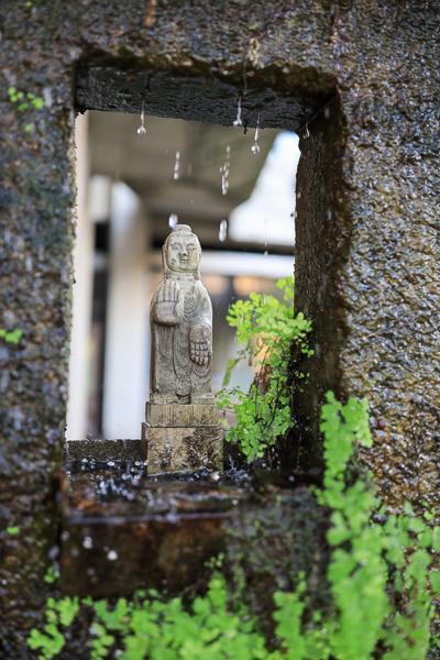 台中大里IBS菩薩寺清水模綠建築,隱身都市的寺廟|維摩舍|半畝塘
