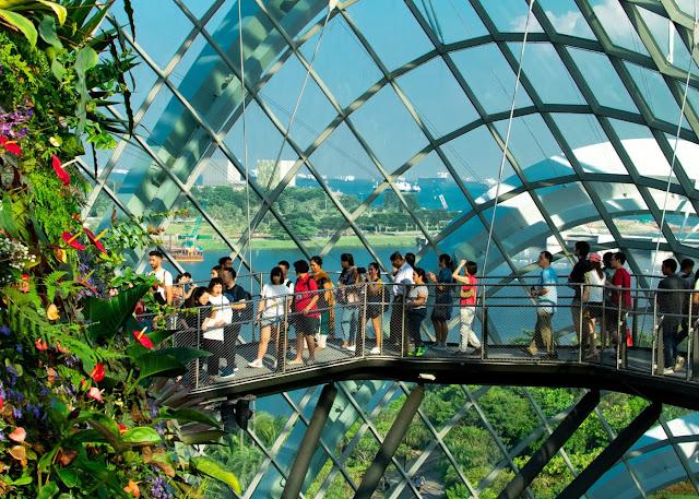tour du lịch singapore cho người cao tuổi