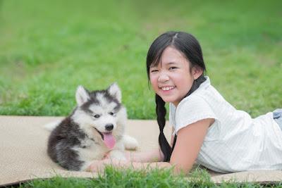 conciliando criancas e pets