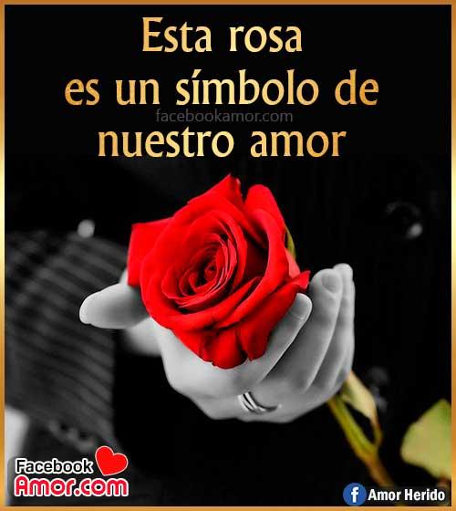 una rosa para ti amor