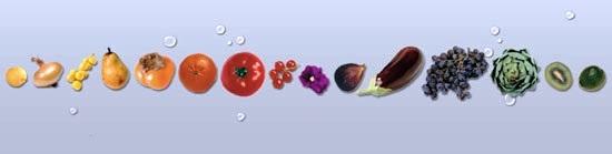 https://www.scribd.com/doc/291948425/Calendrier-des-fruits-et-legumes#fullscreen=1