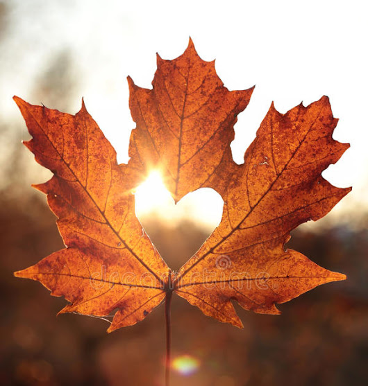 Playlist -- Classic Canadian Love Songs