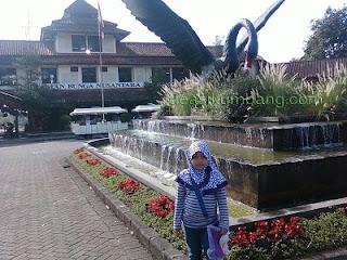 Belajar Menulis Artikel Blog | Taman Bunga Cipanas