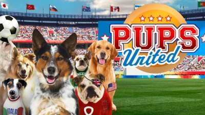 Pups United 2015 Hindi Dubbed 480p Full Movies Dual Audio
