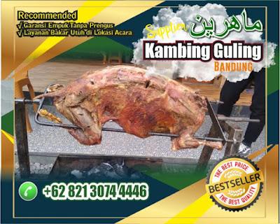 Harga Kambing Guling Bandung | 2020,Kambing Bandung,kambing guling bandung,harga kambing guling bandung,Kambing Guling,