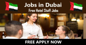 Waiter/ Waitress/ Roomboy/ Housekeeping Attendant/ Chef/ Cook and Kitchen Helper/ Steward Job in Dubai