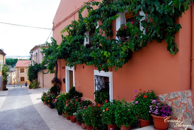 Preciosa calle de San Esteban de Gormaz en su bajada de la iglesia de San Miguel, con macetas, y enredaderas en sus fachadas, luz, color y olor en este lugar.