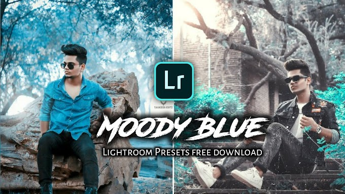 Moody Blue Presets for Lightroom