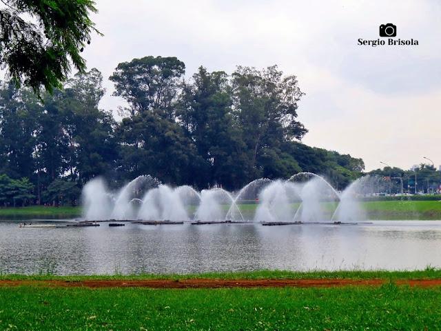 Close-up da Fonte do Parque Ibirapuera - Vila Mariana - São Paulo