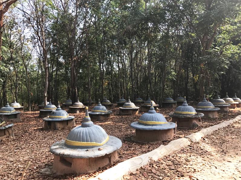 Elephant Graveyard Surin Thailand