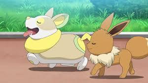 Pokemon Sword & Shield Anime Episode 49