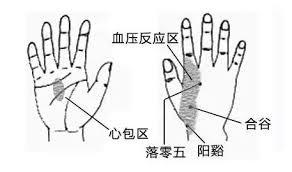 手掌穴道 - 高血壓道按摩穴位