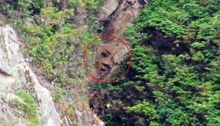 Sesosok Wajah Misterius Mengintip di Balik Hutan