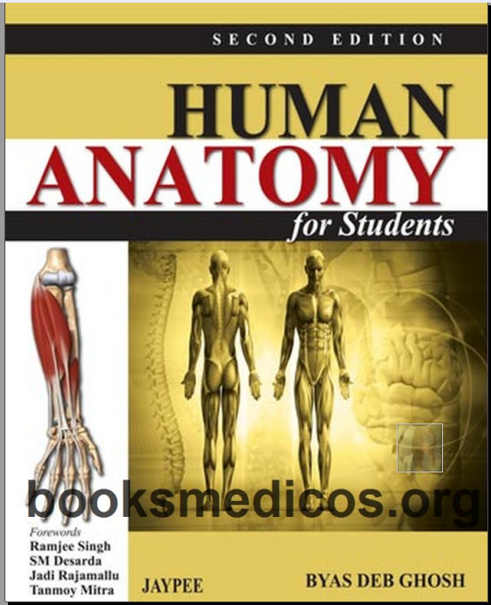 Human anatomy for students