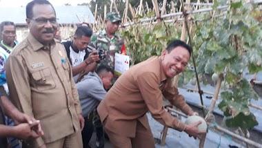 Pemkab Kupang Apresiasi Semangat Petani